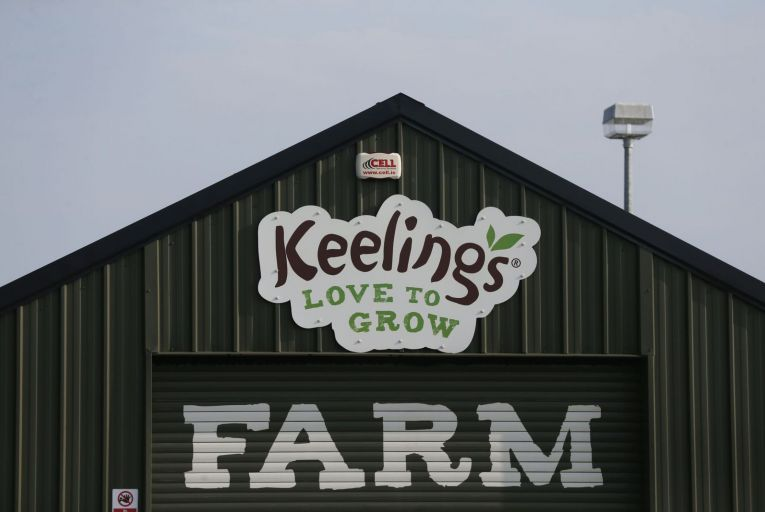 Keelings, the Dublin fruit farm company, came under intense criticism from politicians and the public on Friday
