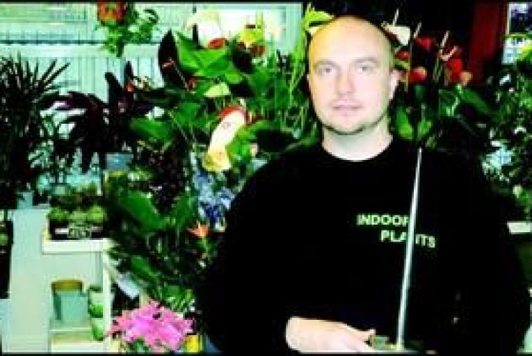 Green shoots for plant retailer