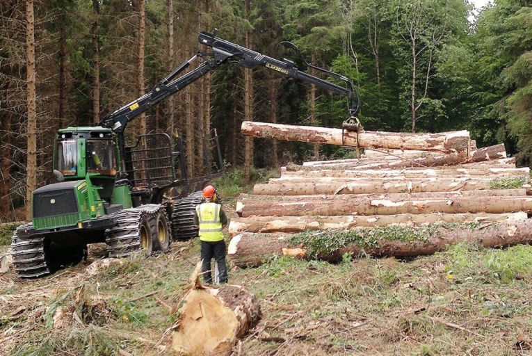 Earlier this year, Peter Sweetman and Neil Foulkes took a High Court case against licences granted to Coillte to fell 11 hectares of trees on a site at Sheskin, Co Offaly.