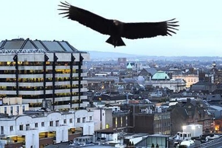 TDs call time on vulture funds