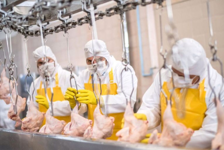 Recruitment executive says meat factory workers are not paid enough