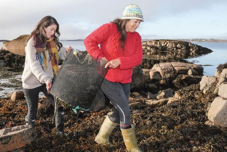 Sinead and Cindy O'Brien sorting through seaweed for their abalone farm