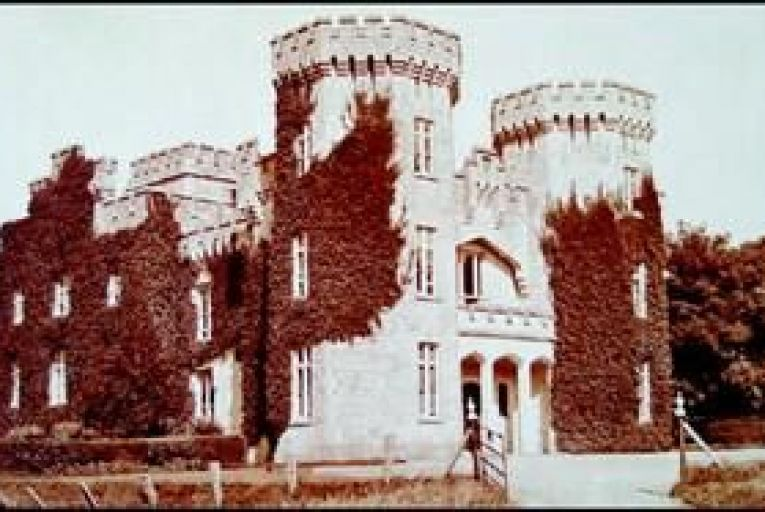Tipperary castle on 131 acres for €1.5 million