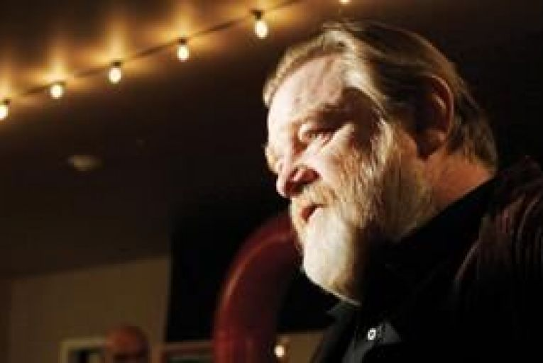 Brendan Gleeson: There is a danger of being over-serious about something that is supposed to be pure fun\' Picture: Danny Moloshok/AP