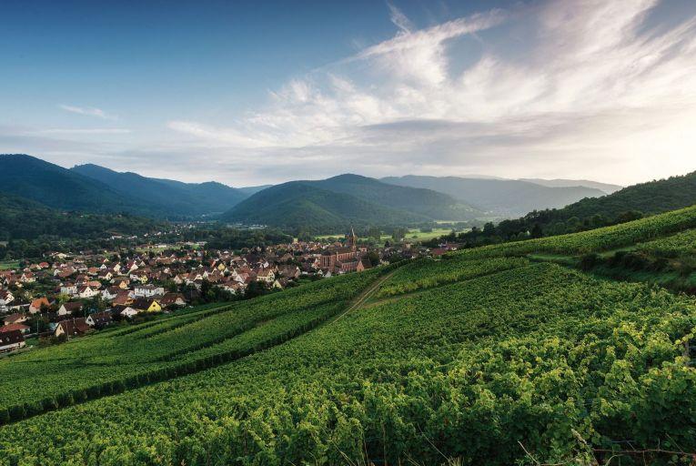 Wine: Alsace strikes an enviable balance