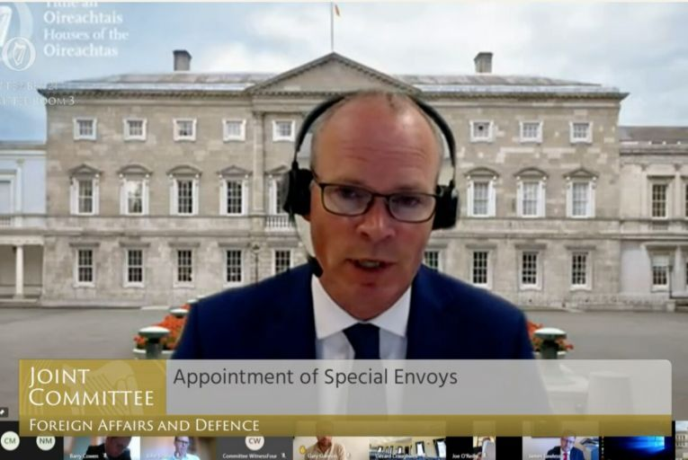 Coveney says he did not offer Zappone envoy role months before official appointment
