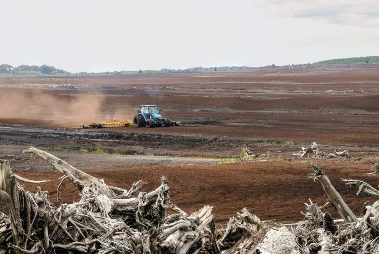There is an ongoing battle between peat producers, who want to restart harvesting operations, and environmentalists who want to ban the practice completely