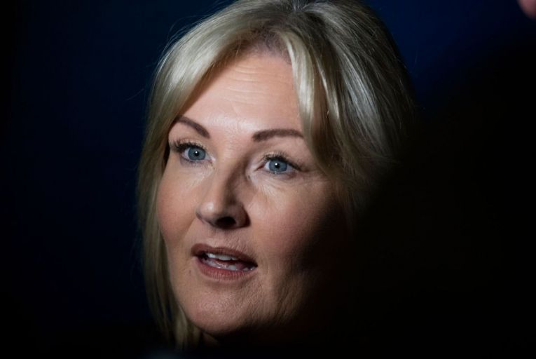 Verona Murphy's campaign in Wexford ultimately crashed and burned. Picture: RollingNews