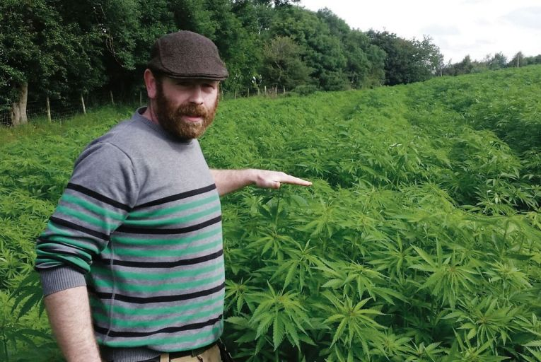 Ed Hanbidge, co-owner of Hemp Tech Ireland and operator of a hemp farm in Co Wicklow, said the industry has been stigmatised for many years