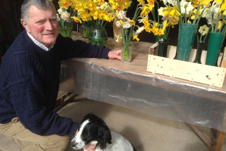 Nial Watson of Ringhaddy Daffodils: 'I never thought I'd see the day that I'd be breeding flowers. I started off breeding cattle.'