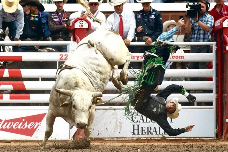 A 'bull n bronc' rider is thrown off- Pic: Blake Chorley