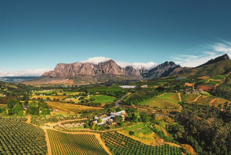 The Cape Winelands in South Africa: the entire region is lined with vines and is perfect for a walking or cycling tour - always with a cold glass waiting at the other end