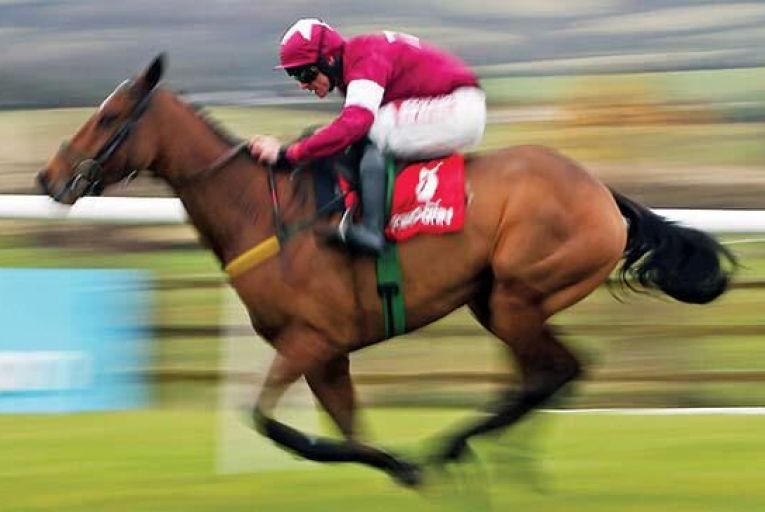 Road To Riches: the Meade-trained horse is third favourite for the Cheltenham Gold CupInpho