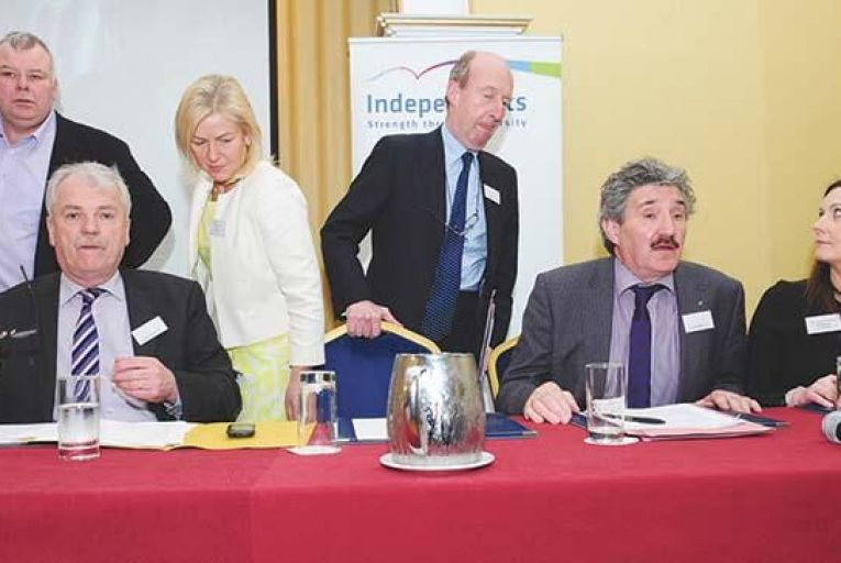 Government can work without a whip, says independent alliance