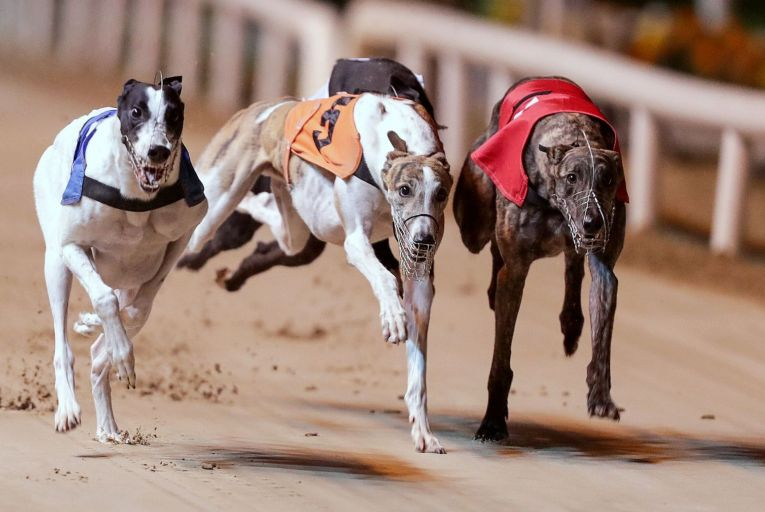 Greyhound Racing Ireland boss says he is satisfied decoupling would not affect its state funding