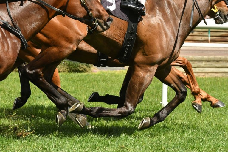 A BBC investigation claimed that 4,000 former racehorses had been slaughtered in British and Irish abattoirs since 2019 and that the majority were Irish-trained. Picture: Getty