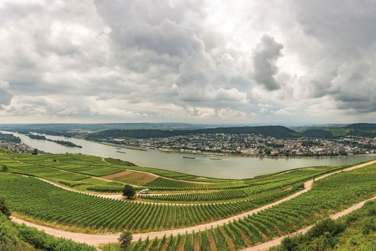 Rüdesheim, in the heart of the Rheingau region: the wines in this region fill the entire spectrum from bone dry through to lusciously sweet
