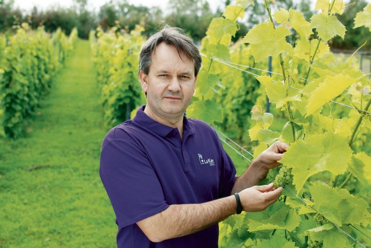 Arnaud Clopin, co-founder of La Kav Wines: 'It is a big dream, but we are already well on our way'