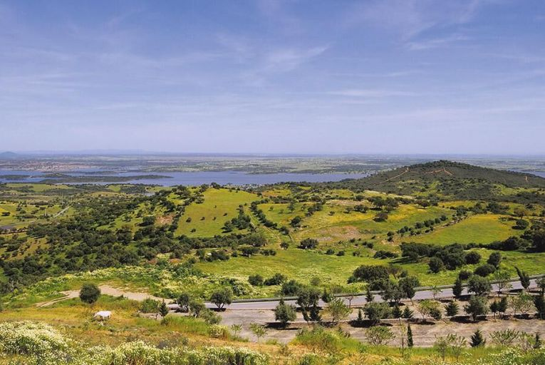 The rolling hills and vineyards of Alentejo in Portugal