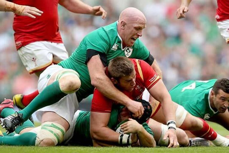 Paul O'Connell: Ireland's  talismanic second-row  will be appearing in his fourth and final World Cup Picture: INPHO