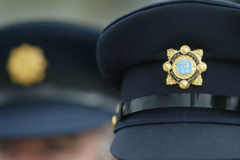 Lee Brothers has challenged An Garda Síochána's decision to award a contract to produce centenary medals to MMI