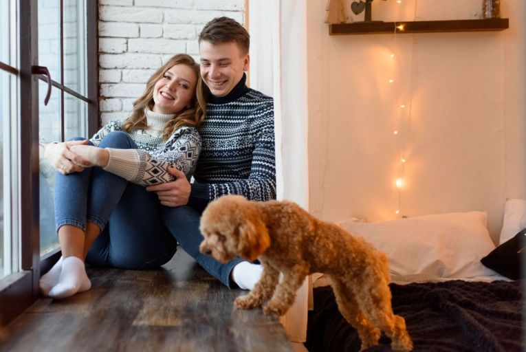 Barking up the right tree: pet-friendly rental schemes