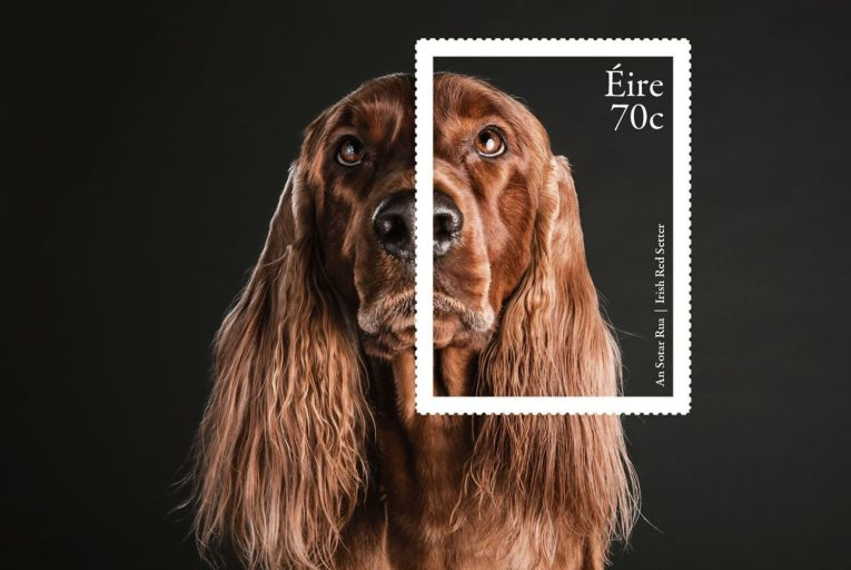 It's a dog's life: the Map Irish Design collection includes designs for stamps