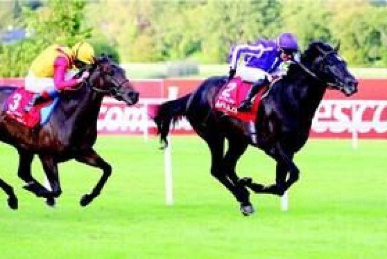 Business Traveller: Five racing certainties