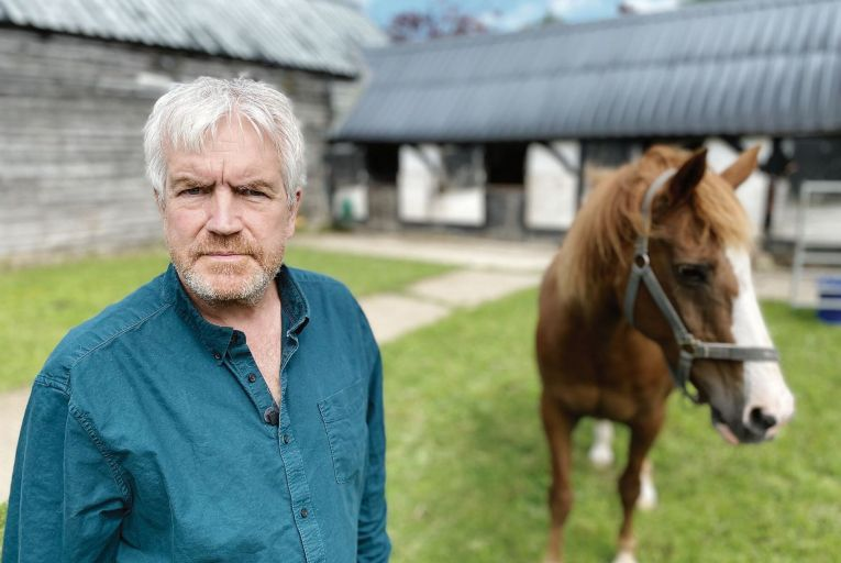 TV review: Documentary reveals how also-rans of horse racing meet horrifyingly cruel end