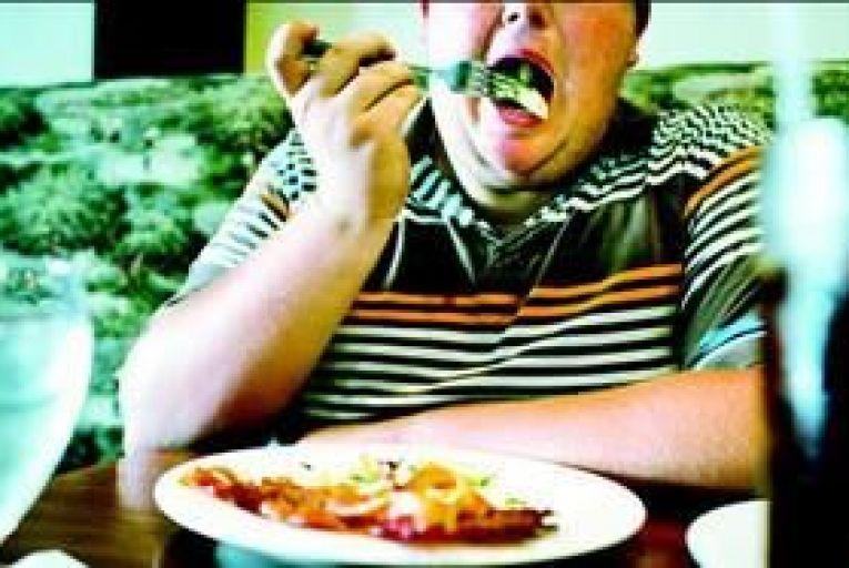 Fat food nation
