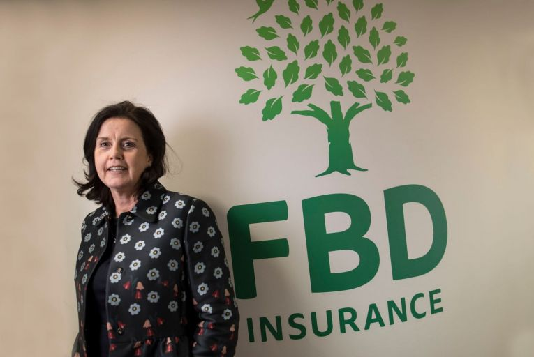 Fiona Muldoon, the former chief executive at FBD, said she believed SMEs would never be able to trade without insurers assuming some of the risks associated with doing business