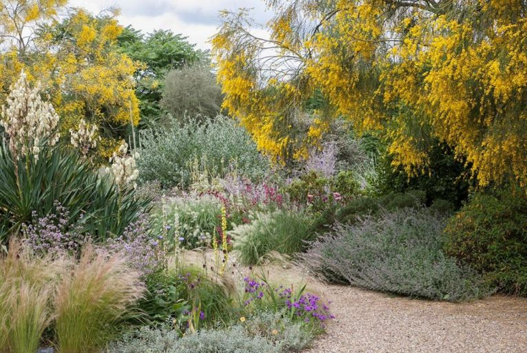 True grit: the growing appeal of a year-round gravel garden