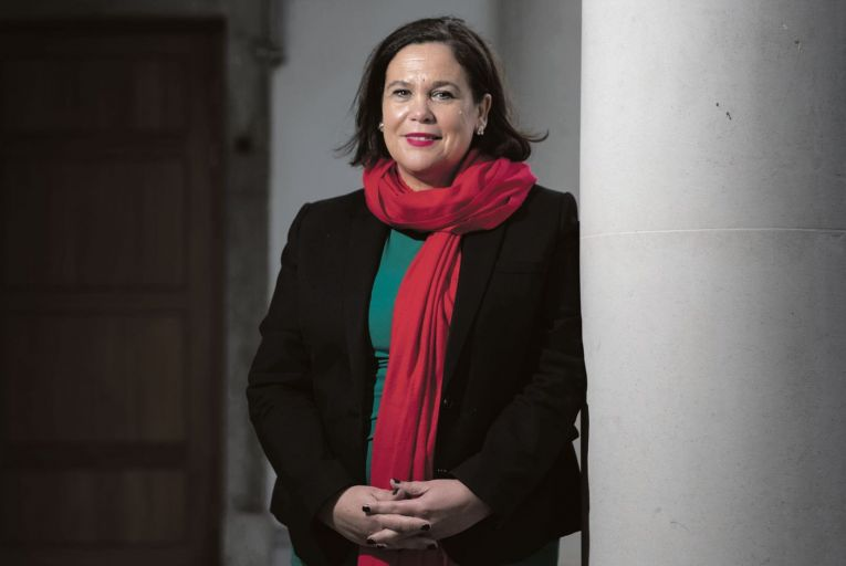 "In an interview with the Business Post, McDonald said she rejected the ""Fine Gael HQ line"" that the online abuse was ""all the Shinners"". But she made an appeal to her own supporters and others to stop being ""pig ignorant"" online."