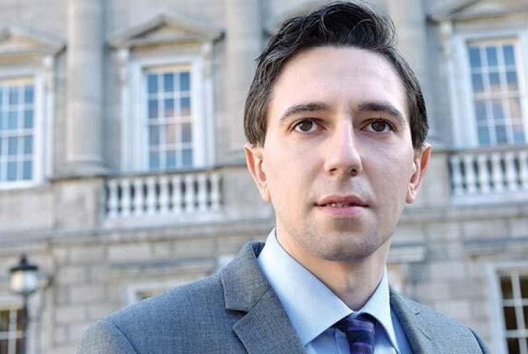 Simon Harris: 'I am encouraged by the progress we have made in a relatively short space of time' Picture: Maura Hickey