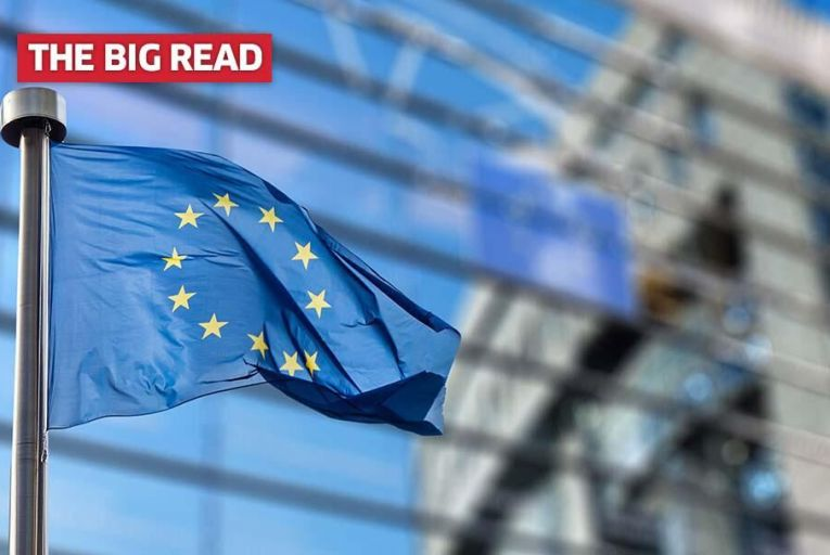 Brexit: Irish support for EU membership undimmed - and could French replace English in the EU?