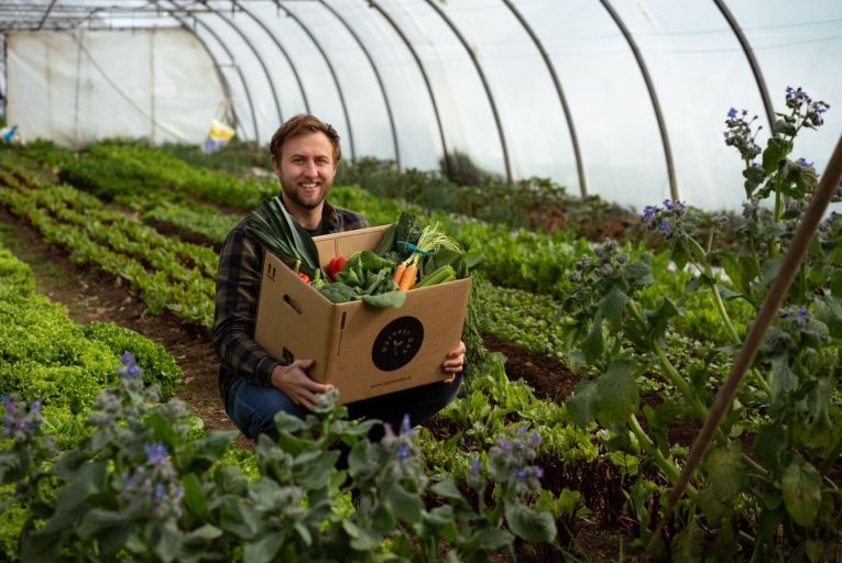Making it Work: Organic food start up Harvest Day delivers sustainable success
