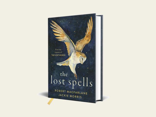 The Lost Spells, Macfarlane Morris