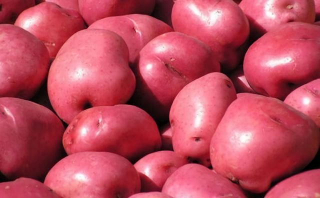 Red Potatoes (2kg)