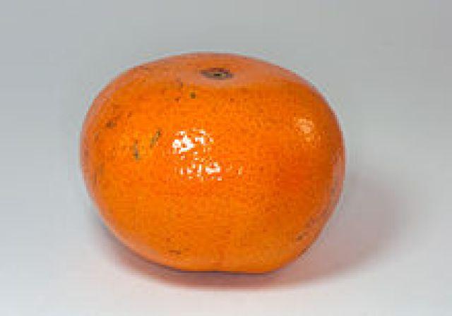 Nadorcotts (Clementine) (1kg)