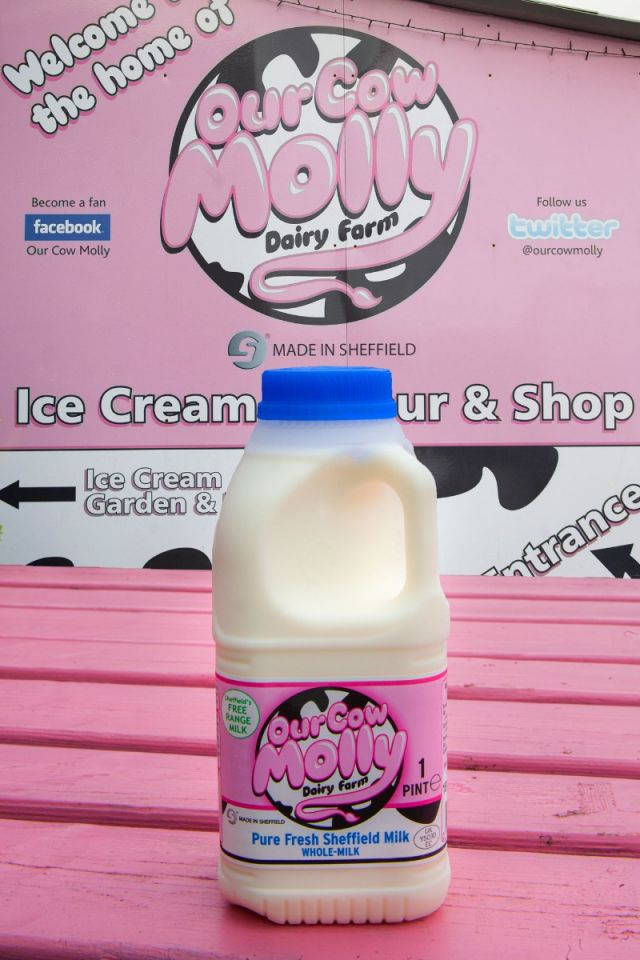 Our Cow Molly Whole Milk (pint)