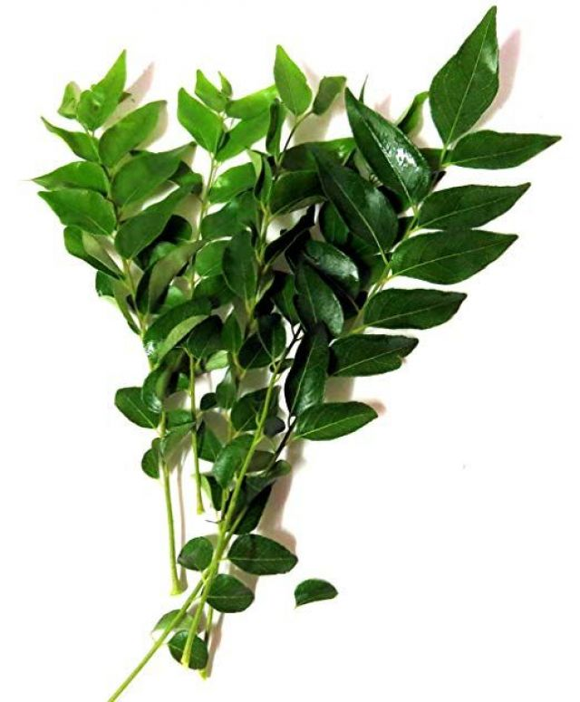 Fresh Curry Leaves (bunch)