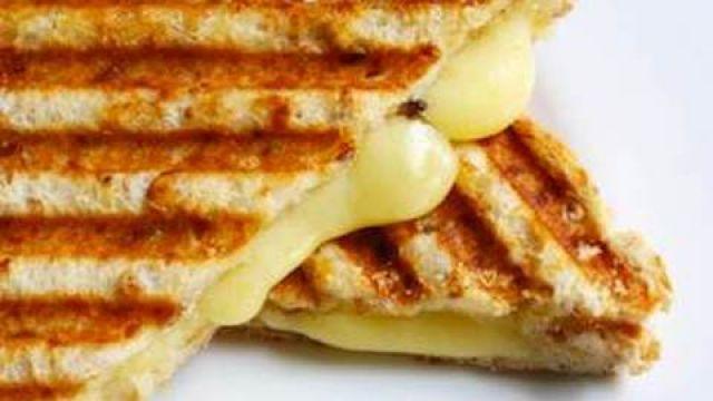 Plain Cheese Panini