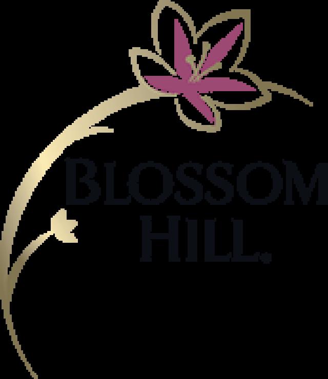 Blossom Hill Soft & Fruity 75cl