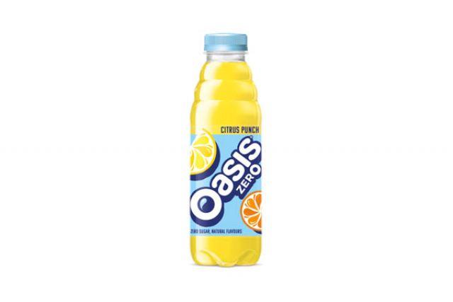 Oasis Citrus Punch Bottle 500ml