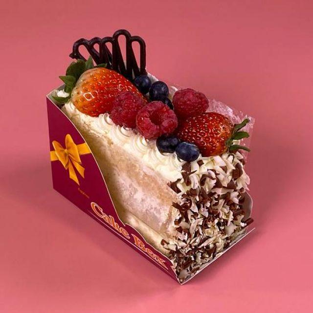 SL020 Forest Fruit Cake Slice