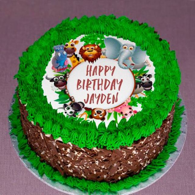 "UR300 8"" Safari Themed Cake"