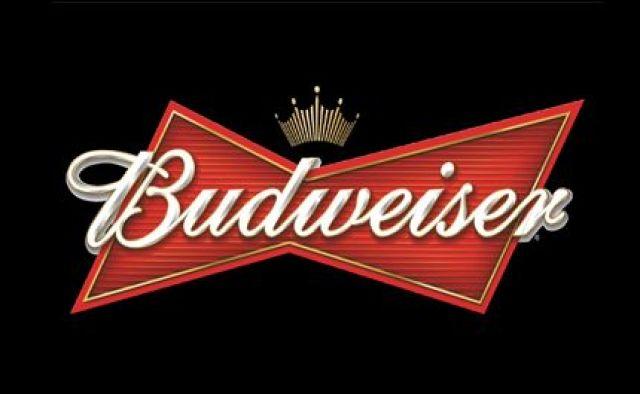 Budweiser 300ml Bottle 6 Pack