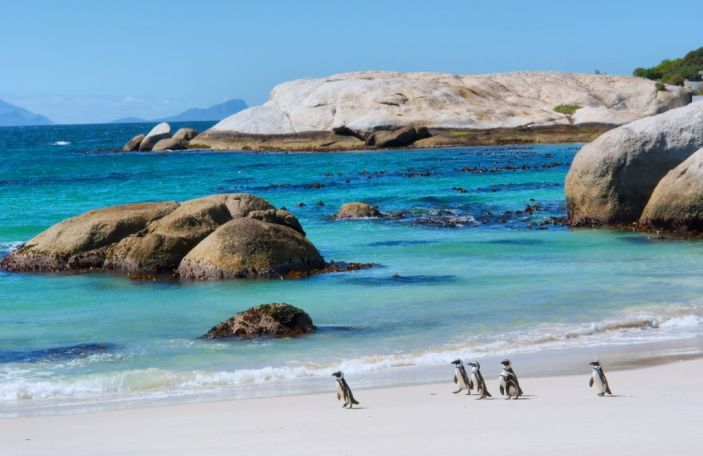 Honeymoon Month 2018: Things to know about a South Africa Honeymoon