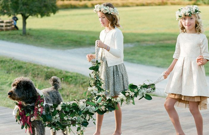 Pets at Weddings: How to Include Your Furry Friends