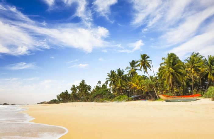 Honeymoon in Sri Lanka - Everything you need to know!